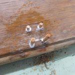 Löcher in antikem Möbel schließen